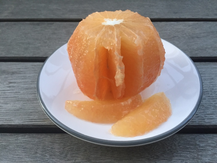 Prettaly_FennelGrapefruitAvocado_Salad_Grapefruit_Cut.JPG