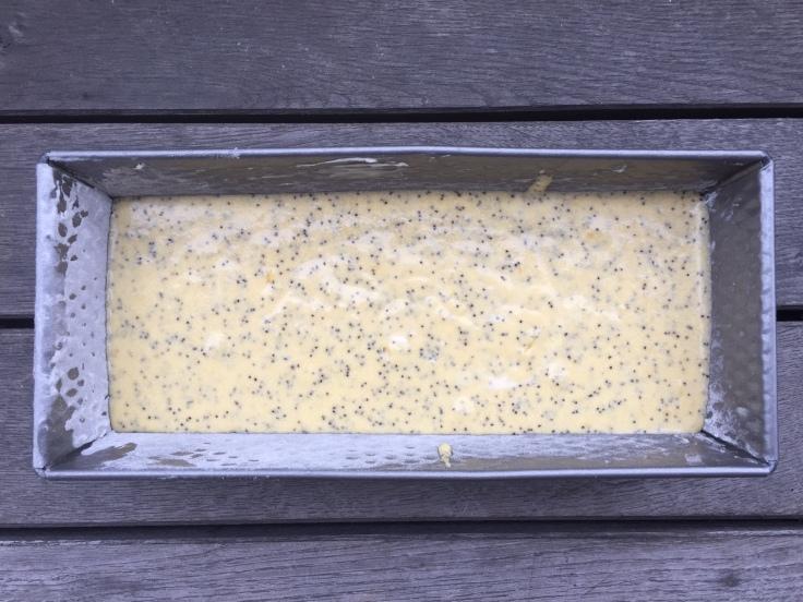 Prettaly_LemonPoppySeedBread_Dough.jpg