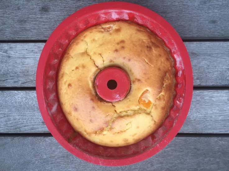 prettaly_tangerinesourcreambundtcake_oven1